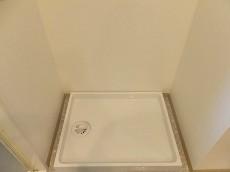 ダイアパレスシェルトワレ目黒 洗濯機置場