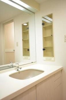 1枚鏡の大型洗面化粧台