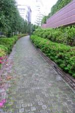 青山パークタワー 散策路