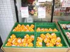 クレベール西新宿 スーパー