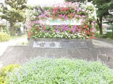 ダイアパレス世田谷公園