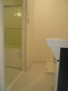 ライオンズマンショングリーン白金 洗面室