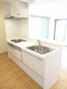 ディナスカーラ新宿 浄水器&食洗器付きのシステムキッチン