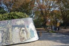 キャニオンマンション駒沢公園 駒沢公園