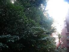 チュリス氷川坂 バルコニーからの眺望312