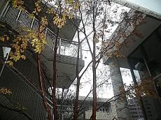 アールヴェール学芸大学 エントランス中庭