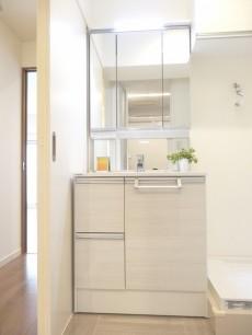 第1恵比寿マンション シャワー付き洗面化粧台