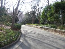 ベル・パークシティ西新宿 周辺環境