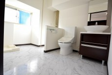 エル・アルカサル三田 洗面室