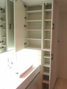 グラントレゾール広尾 洗面台リネン庫