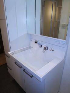 メゾンドール本郷 使いやすそうな洗面化粧台