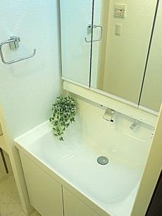 玉川サンケイハウス 洗面化粧台