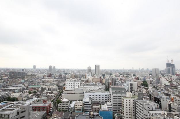 セントラルレジデンス新宿シティタワー 眺望