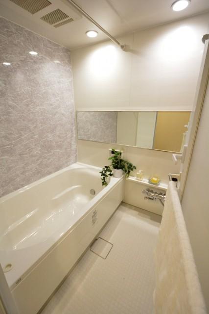 メナー代田 バスルーム703