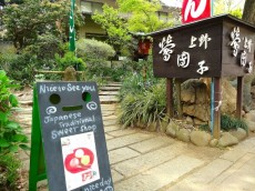 藤和ハイタウン上野 上野恩賜公園
