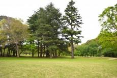 砧スカイハイツ 砧公園2