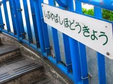 恵比寿グリーンハイム 周辺
