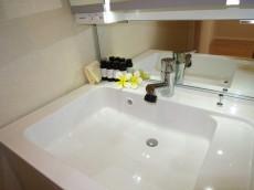 トーア早稲田マンション 使い勝手良さそうな洗面化粧台