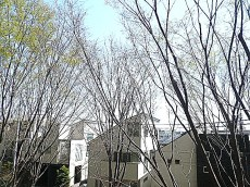 深沢ハウス 2階からの眺望204