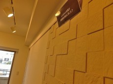 小石川ザ・レジデンス リビング壁