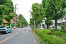 東高PAIR CITY 車道