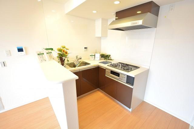 柿の木坂パレス 使いやすいL時キッチン