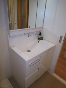 柏木ローズマンション 使い勝手良さそうな洗面化粧台