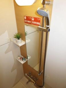 常磐松サマリヤマンション バスルームはゆったり癒されそう