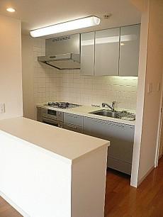 セーナ世田谷公園 カウンター付システムキッチン