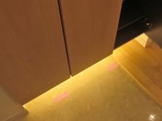 五反田サニーフラット 玄関間接照明