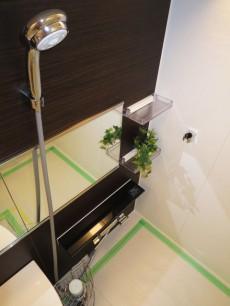 下落合グリーンパーク ゆったりサイズのバスルーム