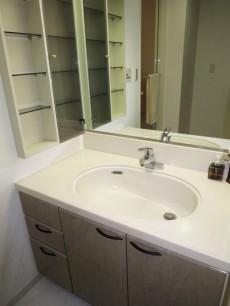 下落合南デュープレックス 使いやすそうな広々洗面化粧台