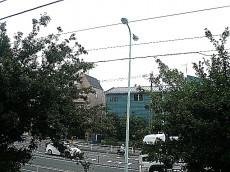 学芸大学グリーンハイツ 2階からの眺望
