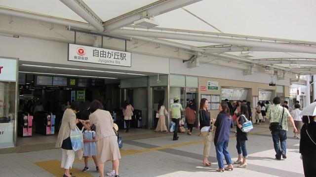 ニューウェルハイツ第2自由ヶ丘 駅