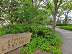 南大井アーバンハイツ 公園