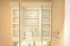 成城エコーハイツ 洗面化粧台収納803