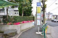 藤和大蔵コープ バス停