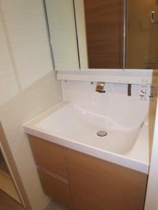 新宿パークサイド永谷 使い勝手良さそうな洗面化粧台