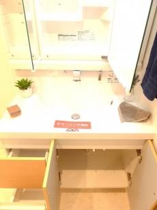 メイゾン大森 洗面台