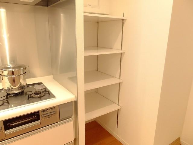 パレス池田山 キッチン棚203