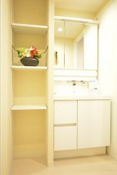 五反田コーポビアネーズ 洗面化粧台と棚
