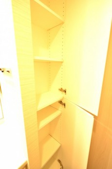 ブランズ中野南台 洗面室収納