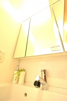 フジホーマンション 洗面台