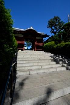 藤和シティコープ音羽 周辺環境 護国寺