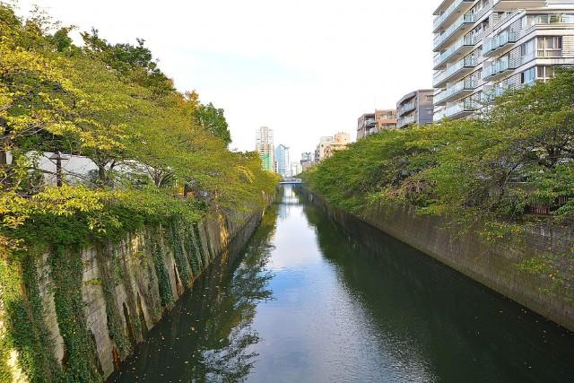 セザール第2目黒三田 目黒川