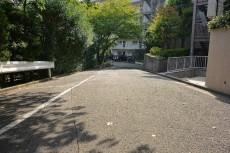 エクセルハイツ大井仙台坂 前面道路