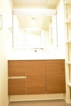 大井町ハウス 洗面化粧台