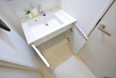 東池袋リリエンハイム 洗面室