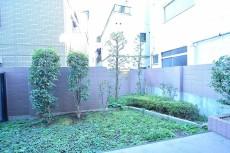フリーディオ三宿 38㎡の専用庭