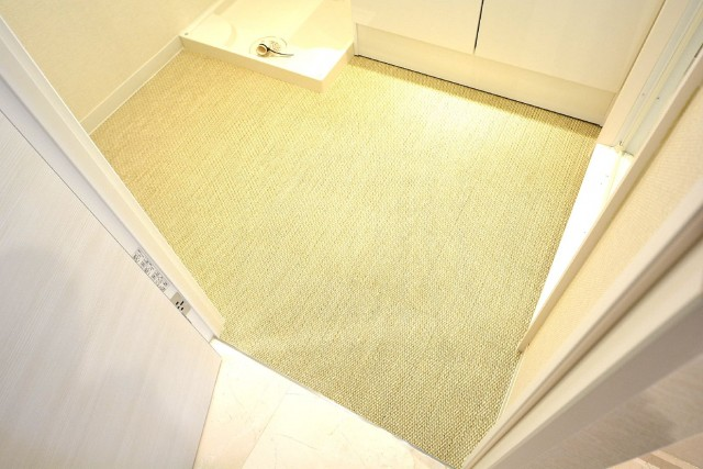 マンション高輪苑 洗面室